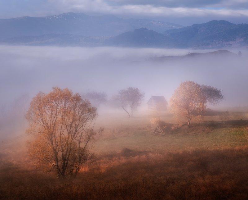 карпаты, осень, украина, деревня, пейзаж, туман Осень в Карпатахphoto preview