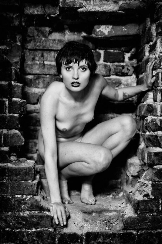 girl, woman, арт, женщина, nude, ню, девушка, модель, model, art Tales from the Cryptphoto preview