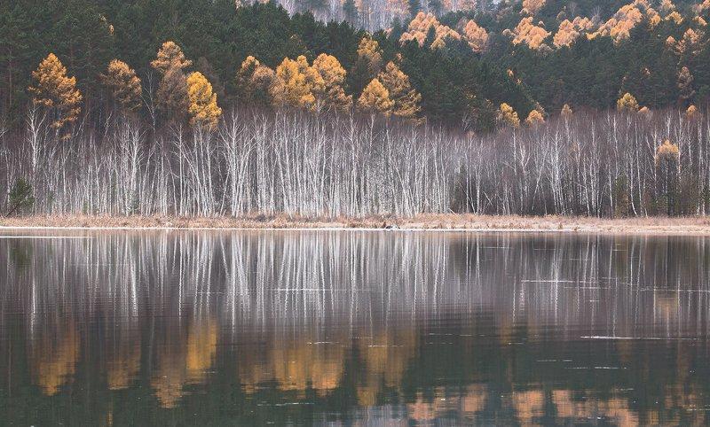 Осенний лес Фото Андрея Таничева Тишинаphoto preview