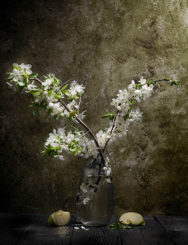 Цветёт вишняphoto preview