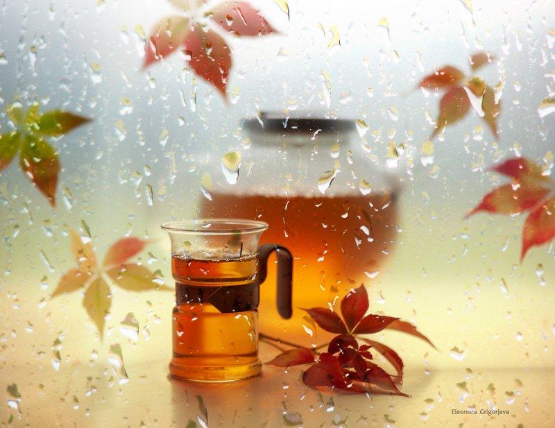 Дождливая осеньphoto preview