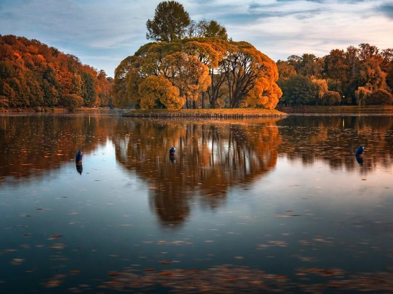 осень,пруд,отражение,листва,парк ***photo preview