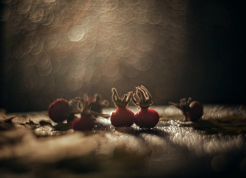 Осенняя романтикаphoto preview