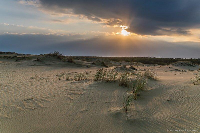 Закат над дюнамиphoto preview