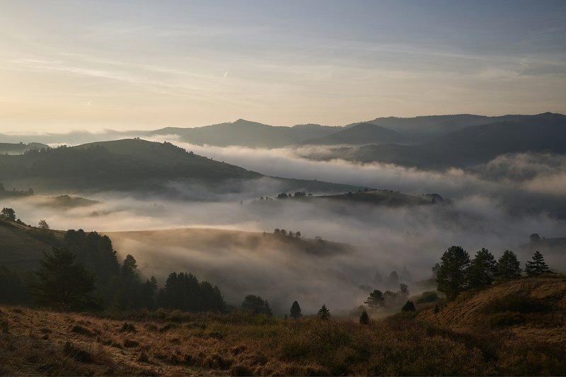 fog,morning,sunrise,mist,hill,hills,autum FOgphoto preview