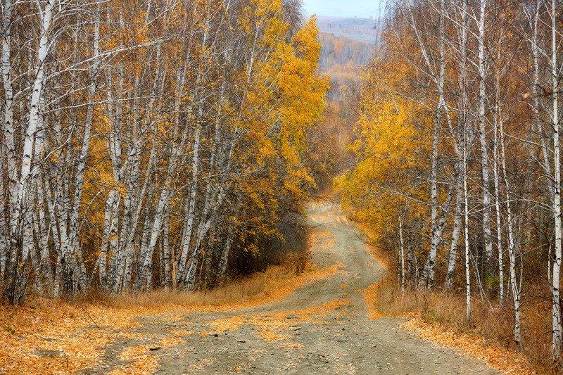 южный урал,оренбургская область, орск, новотроицк,башкирия, башкертостан Осенняяphoto preview