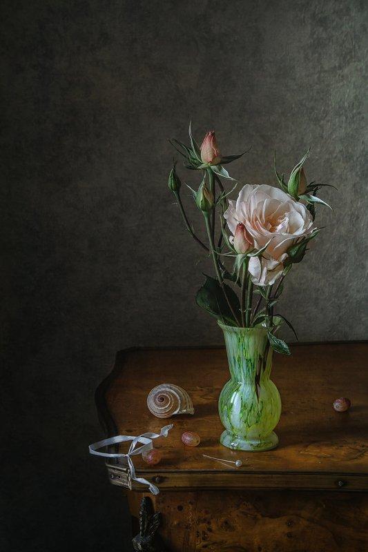 натюрморт, цветы, розы, виноград, ракушка Розы бледный шёлкphoto preview