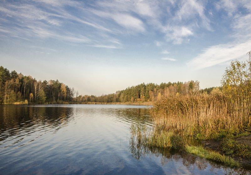 nevant60, пейзаж, красота, природа Осеньphoto preview