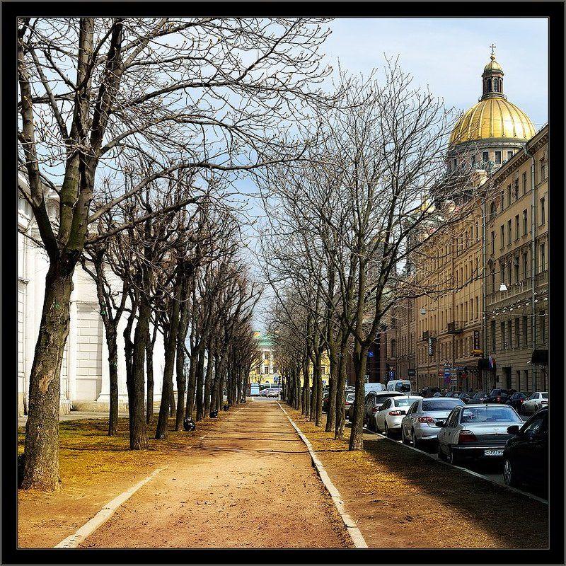 петербург, центр, исакий, весна, квадрат Цветная весенняя питерская квадратная зарисовкаphoto preview