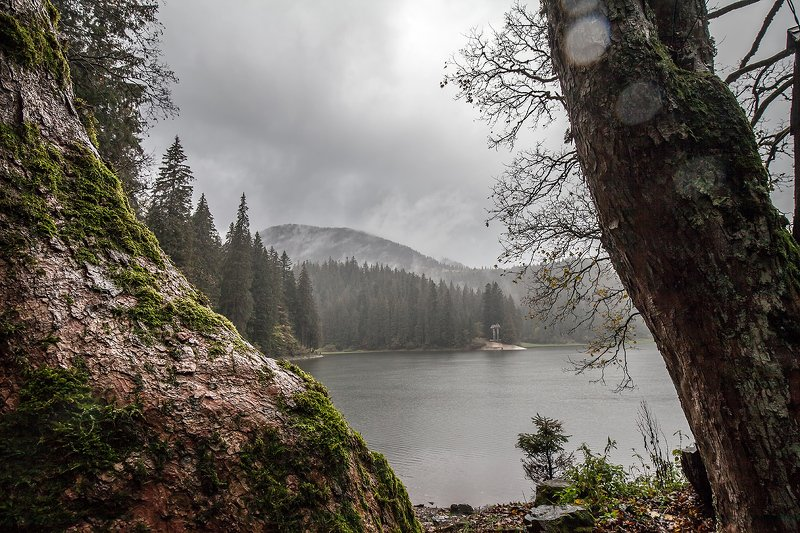 Озеро Синевир, Карпаты,  Carpathian,  Carpathian Mountains, Synevyr lake Озеро Синевирphoto preview