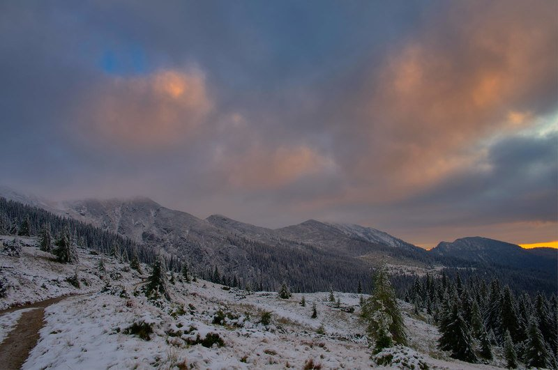 #nature, #туман, #лес, #oсень, #украина, #карпаты, #пейзаж, #закат, #туман, #солнце, #свет, #mountain range, #mountains, #туризм, #лес, #nature, #природа, Мармароський масивphoto preview