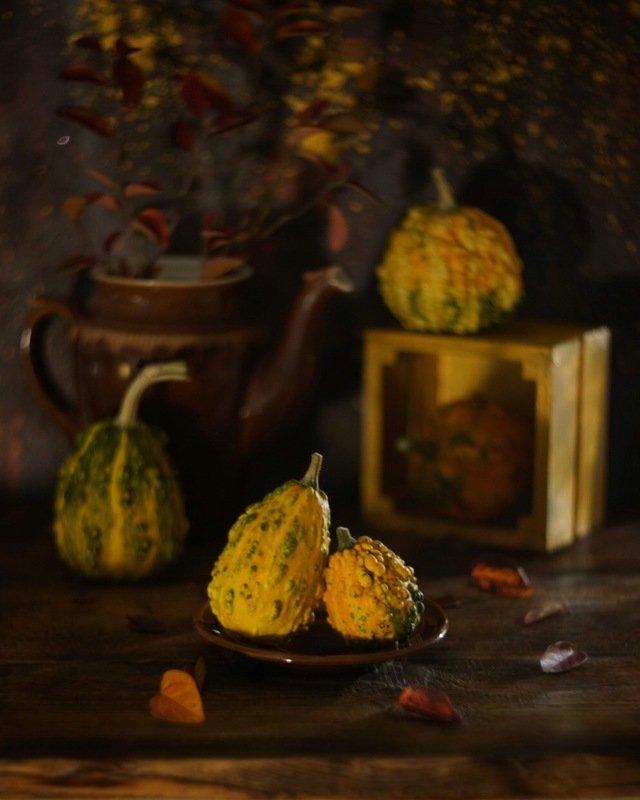 натюрморт гелиос тыква осень stilllife helios pumpkin autumn Про тыковкиphoto preview