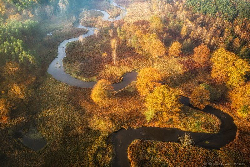 landscape, poland, light, autumn, awesome, amazing, sunrise, sunset, lovely, nature, travel, morning, trees, drone, river, meandering, dji, mavic Autumnphoto preview