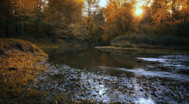 осень,ручей,закат,парк ***photo preview