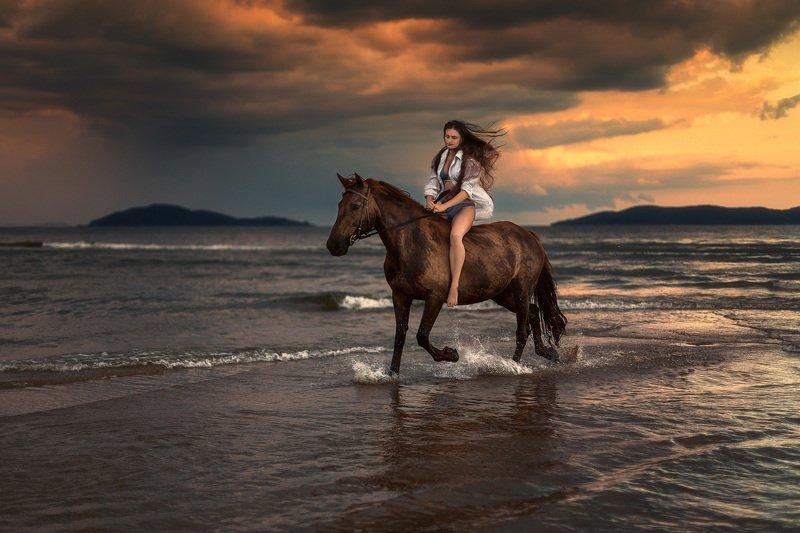 вечер, лошадь, девушка ***photo preview