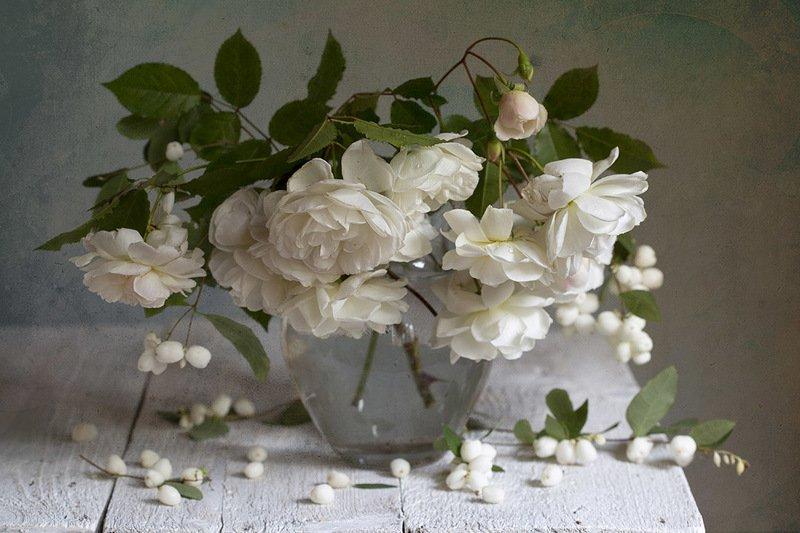 роза, стекло, ваза, снежная ягода Снежная розаphoto preview