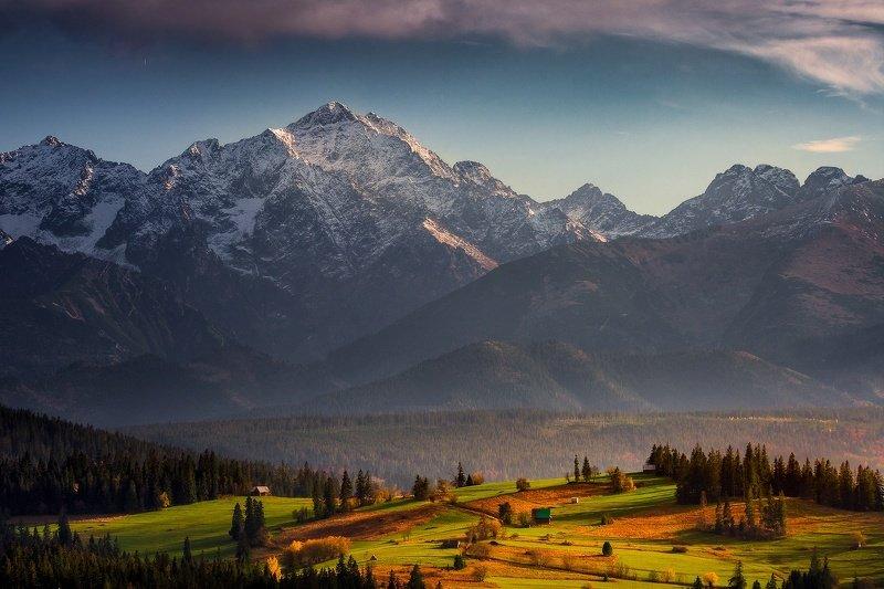 Polish Himalayaphoto preview