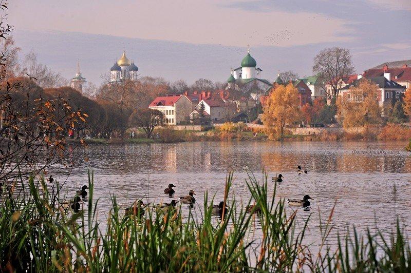 город, пейзаж, осень, псков, собор, река пскова,  Псков осенний.photo preview