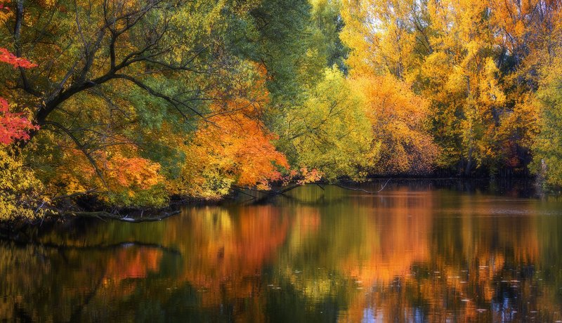 Река Таракановка. Река Таракановка.photo preview