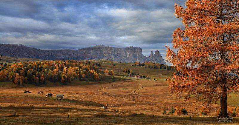 Золото Доломитовых Альп фото превью
