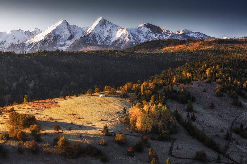 autumn contrastsphoto preview
