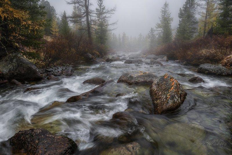 хакасия, горная хакасия, большой он Хакасия, река Большой Онphoto preview