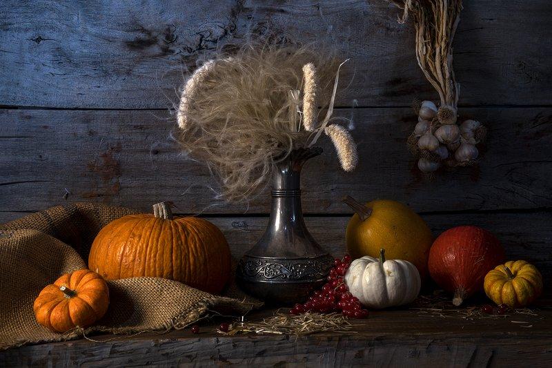 натюрморт, тыква, облепиха, Pumpkin Pumpkin IIphoto preview