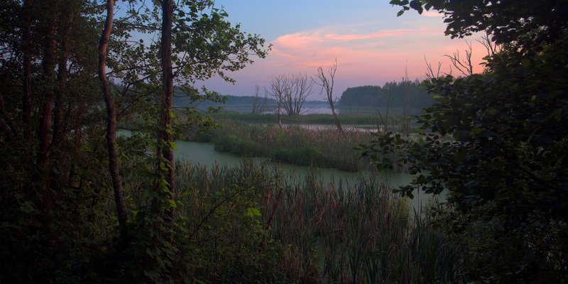 Июнь. Вечерний взгляд на залив р.Клеваphoto preview