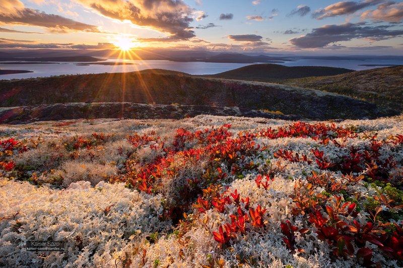 россия, хибины, мох, имандра Час белого хладаphoto preview