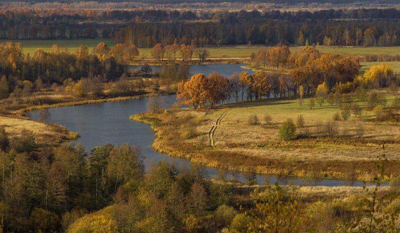 осень октябрь венец быковка текмаш Осеннее настроениеphoto preview