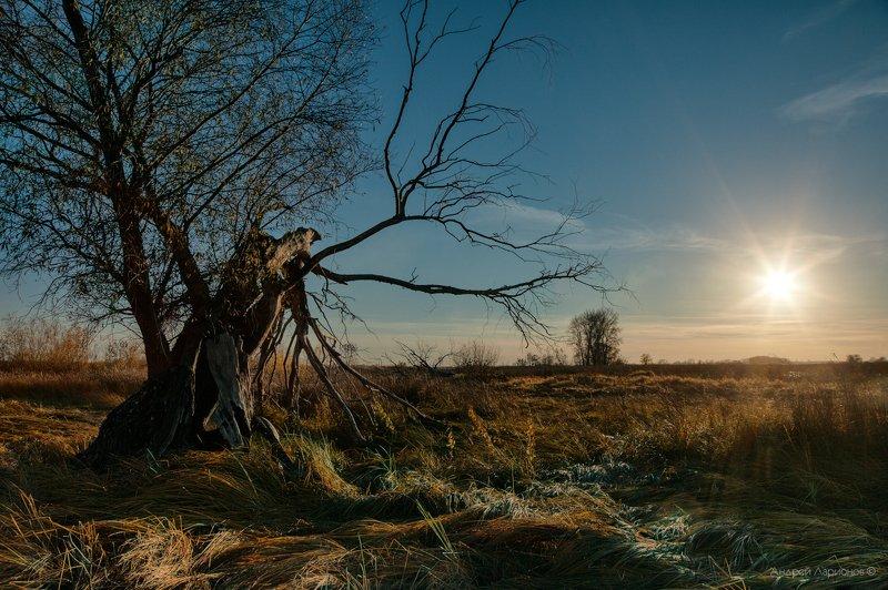 пейзаж, закат, осень Звезда по имени солнцеphoto preview