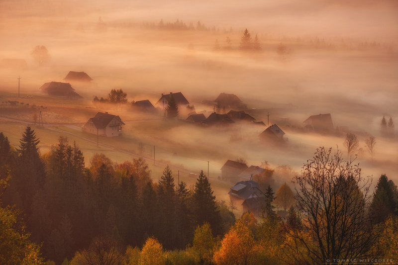 landscape, poland, light, village, autumn, awesome, amazing, rays, sunrise, sunset, lovely, nature, travel, morning, trees, house, fog, mist Wrapped up by fogphoto preview