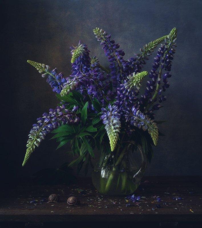 натюрморт,лето,цветы,люпин ...photo preview