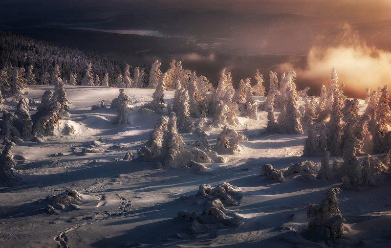 Следы на снегуphoto preview