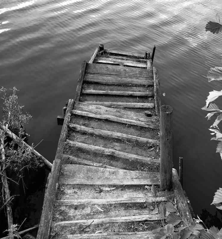 монохром Четыре шага.photo preview