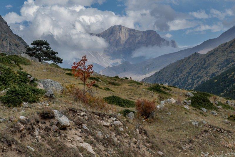 горы, перевал, чегем, кбр, природа, осень, кавказ, качкорташ, Вид на хребет Качкорташ, Чегемское ущельеphoto preview