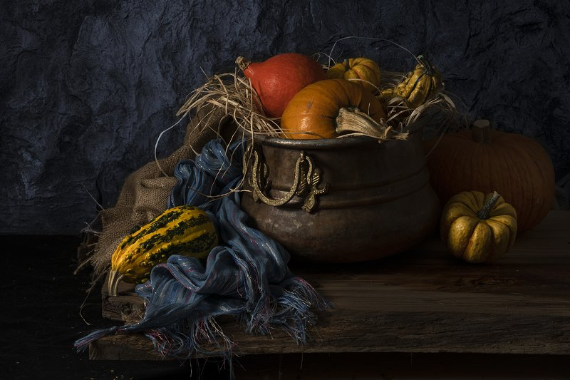 натюрморт, тыква, облепиха, Pumpkin Pumpkin IIIphoto preview