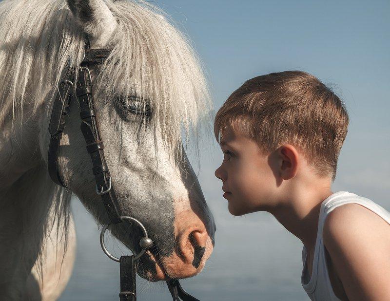 Маленький принц и его маленькая белая лошадьphoto preview