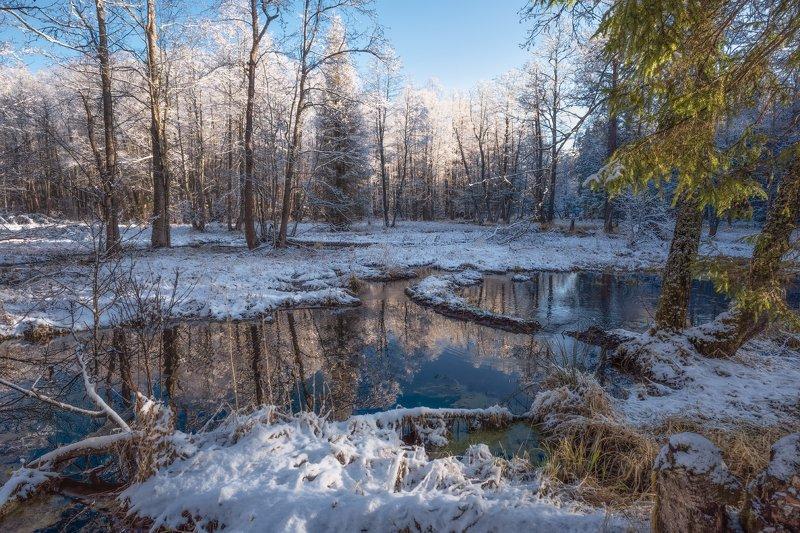 утро,рассвет,лес,снег,река,отражение снежное утроphoto preview