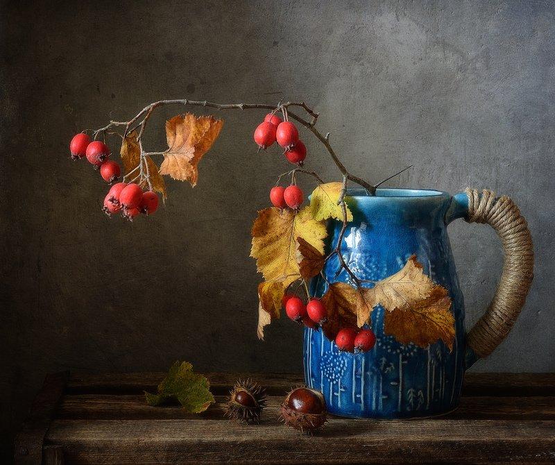 натюрморт,осень,боярышник с боярышником...photo preview