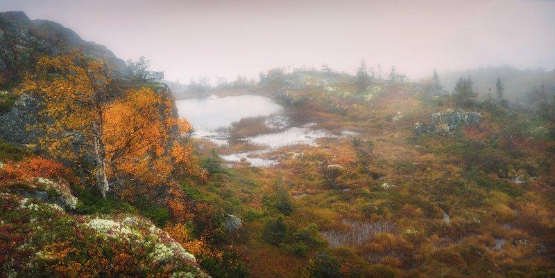 кивакка, паанаярви, карелия Туманное озеро Киваккиphoto preview