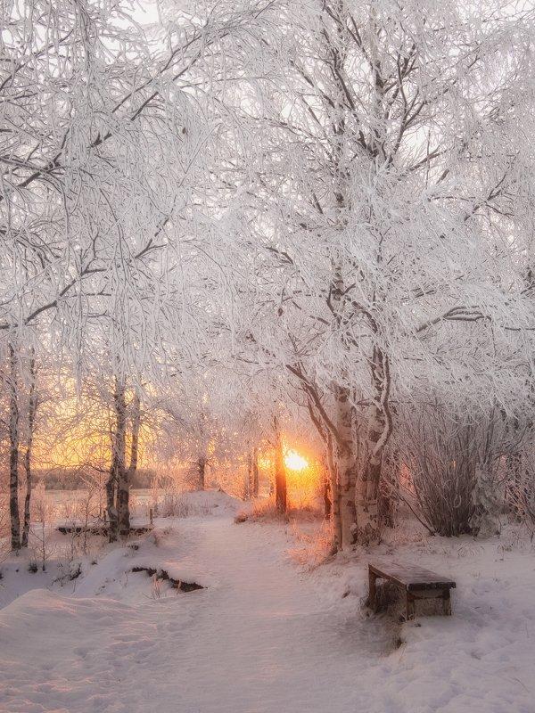 печора,коми,снег Закат северного ноябряphoto preview