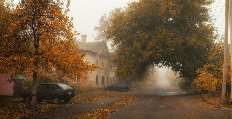 Туманная осень в сталинкахphoto preview