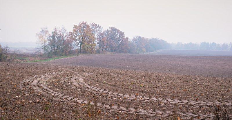autumn, осень Осенние истории...photo preview
