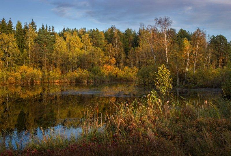 осень октябрь вечер вода отражение В закатных лучахphoto preview