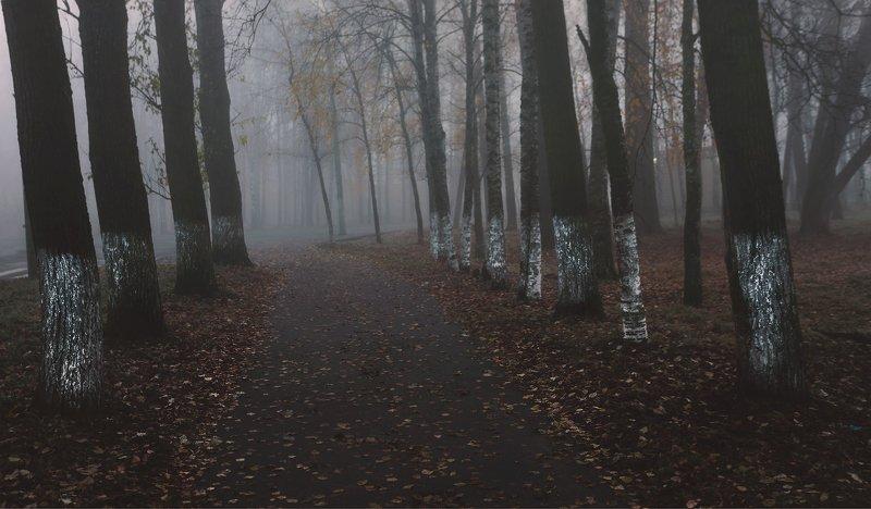 питер, пейзаж, осень, пушкин, царскоесело, царское Время безвременья . . .photo preview