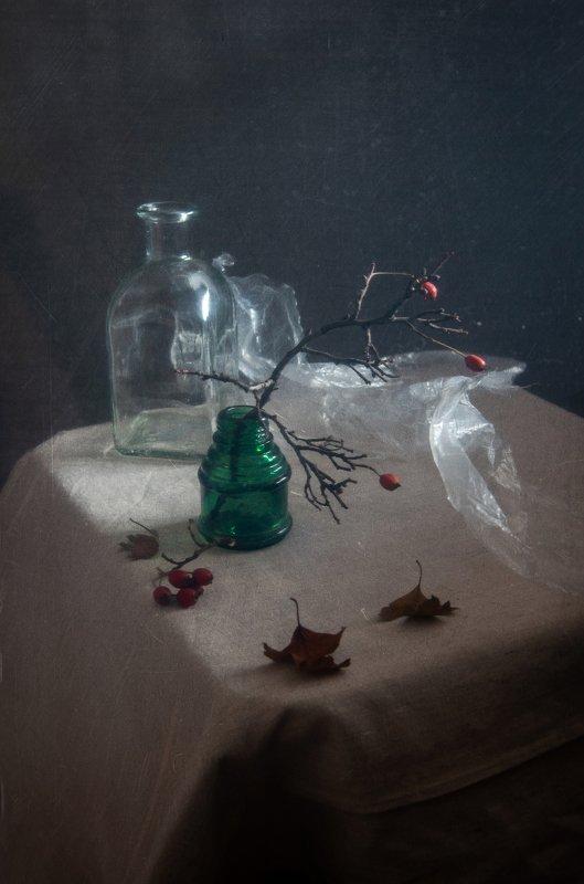 осень, аромат, ягоды, боярышник, натюрморт, ветка Осенний ароматphoto preview