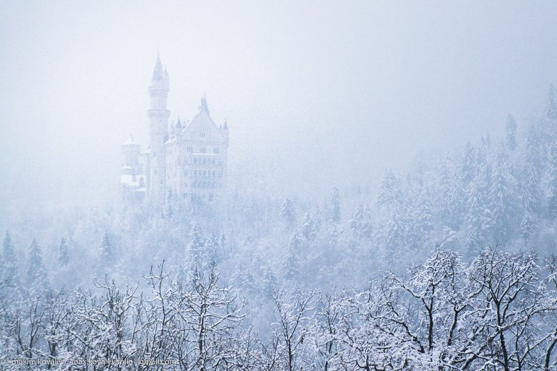europe, germany, hohenschwangau, neuschwanstein castle, architecture, castle, fog, forest, mountain, nature, plant, snow, tree, winter, германия, европа, нойшванштайн замок, хоэншвангау, архитектура, гора, дерево, замок, зима, лес, природа, растение, снег В снежном облаке / In a snow cloudphoto preview