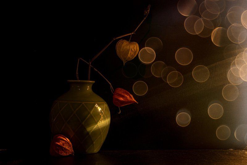 still life autumn expressionphoto preview