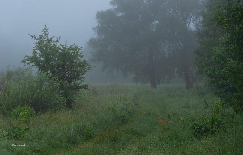 Где трав цветущих запах пряный....photo preview